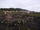 Fuencaliente, a wine district among volcanoes  :: Fuencaliente, municipio de vino entre volcanes